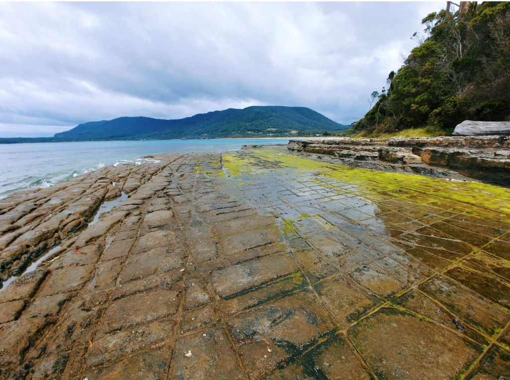 Things to do on the tasman peninsula